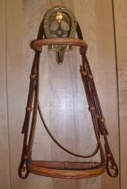 EquuSport Custom Bridle 2