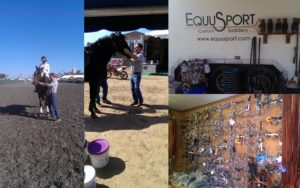 EquuSport Collage