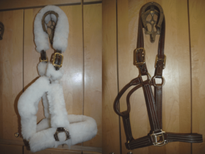 Leather Halters & Shipping Halters