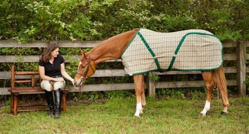 Custom Horse Linens & Barn Set Ups