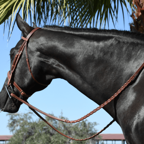 Raised Laced Reins